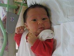 Eliška Chvojková se rodičům Andree Burgrové a Radku Chvojkovi z Kralup nad Vltavou narodila v mělnické porodnici 31. března 2014, vážila 3,54 kg a měřila 51 cm.