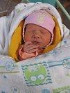Anna Alžběta Křiváková se rodičům Barboře Křivákové a Pavlu Mikyskovi z Vehlovic narodila v mělnické porodnici 24. prosince 2016, vážila 2,96 kg a měřila 49 cm. Na sestřičku se těší 4letý Adam František.