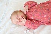 Barbora Veselá se rodičům Barboře Karlovské a Tomáši Veselému z Mělníka narodila 21. listopadu 2017 v mělnické porodnici, měřila 50 cm a vážila 3,45 kg.