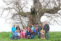 Děti chtějí v soutěži Strom roku 2015 podpořit prastarou lípu.