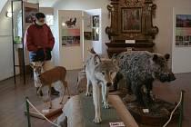 Výstava Dole v dole … a nejen v tom Kokořínském a Bavorská muzea v přírodě.