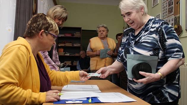 Na Mělnicku ovlivnili výsledky voleb i klienti mělnického Domova seniorů (ilustrační foto).