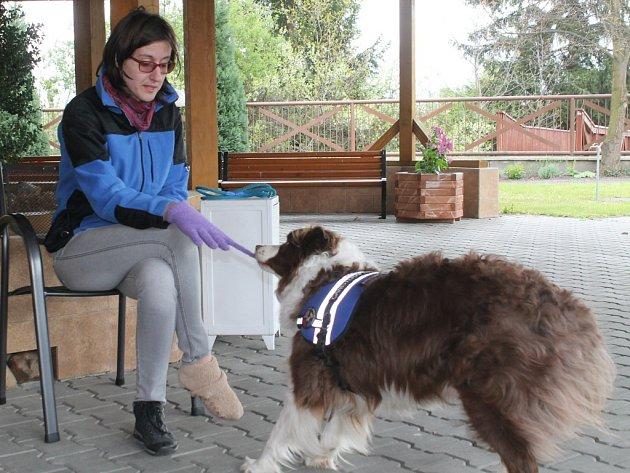Ukázka dovedností asistenčního psa v Domě Kněžny Emmy v Neratovicích.