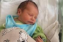 Nikolas Jón, Střednice. Narodil se 25. ledna 2019 v mělnické porodnici. Po porodu vážil 2,74 kg a měřil 48 cm. Rodiče jsou Jiřina a Petr Jónovi.