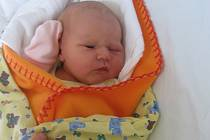 Nella Procházková se rodičům Lucii Budkové a Robertu Procházkovi z Prahy narodila v mělnické porodnici 19. listopadu 2013, vážila 3,27 kg a měřila 50 cm. Na sestřičku se těší 2letá Laura.
