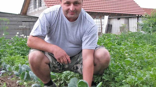 V chladných dnech roste zelenina pomaleji, zkušenosti s tím má i cítovský zahrádkář Jiří Matiasko.