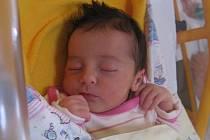 Stela Vaňková se rodičům Jitce Bukové a Michalu Vaňkovi z Brozan nad Ohří narodila v mělnické porodnici 14. září 2014, vážila 2,91 kg a měřila 47 cm.