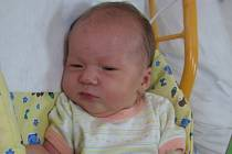Markéta Nedvědová se rodičům Haně a Petrovi z Neratovic narodila v mělnické porodnici 14. srpna 2015, vážila 3,55 kg a měřila 49 cm. Na sestřičku se těší 2,5letý Matouš.