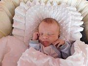 Samuel Rosenbaum se rodičům Karolíně a Jiřímu z Řepína narodil v mělnické porodnici 30. května 2016, vážil 2,65 kg a měřil 46 cm.