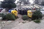 Vánoční stromky mohou obyvatelé měst odkládat ke kontejnerům s komunálním odpadem. Foto ze sídliště Rokytnice.