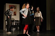 Krajská postupová přehlídka amatérských divadel s názvem Divadelní Vsetín 2017 se uskutečnila v místním Lidovém domě od čtvrtka 16. března do soboty 18. března. Pořadatelé z místního ochotnického spolku připravili pro návštěvníky celkem šest představení.