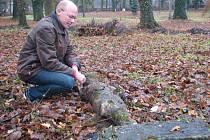 Zajímavý objev se před několika dny podařil v Brankách. Dělníci při bourání starého plotu ve zdejším zámeckém parku našli pod vrstvou listí a hlíny torzo betonové plastiky.