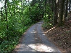 Muž sjížděl na kole z Prženských pasek, havaroval a zemřel