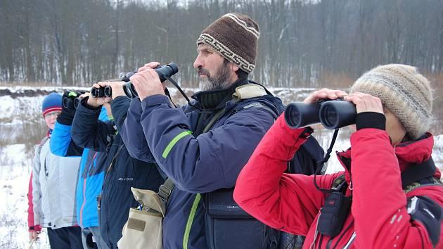 Dobrovolníci z Valašského Meziříčí a okolí sčítají v sobotu 12. ledna 2019 pod vedením ornitologa Miroslava Dvorského (v hnědé čepici se světlými pruhy) na dvanáctikilometrovém úseku podél řeky Bečvy mezi Hustopečemi nad Bečvou a Valašským Meziříčím.