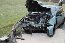 Řidička Fordu přerazila strom u cesty, skončila v nemocnici