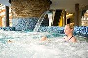 Bazén ve wellnes v hotelu Horal.