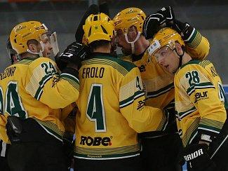 Hokejisté Vsetína. Ilustrační foto