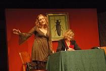 Divadelní představení Brouk v hlavě
