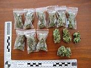 Policisté našli v domku muže ze Vsetína kompletní pěstírnu konopí, pět desítek rostlin i již připravenou marihuanu.