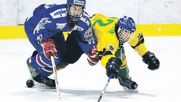 V souboji dvou regionálních zástupců vyhráli v tomto utkání domácí Bobři (v modrém) nad Vsetínem 5:2.