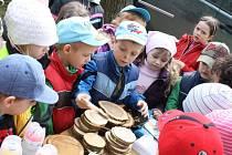 Děti Mateřské školy Rokytnice poznávají stromy