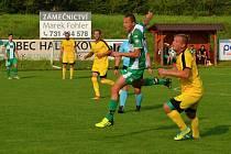 Pavel Holec (zelený dres)