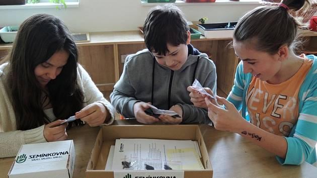 Žáci ze Základní školy Rokytnice ve Vsetíně připravují první balíčky semínek k distribuci.