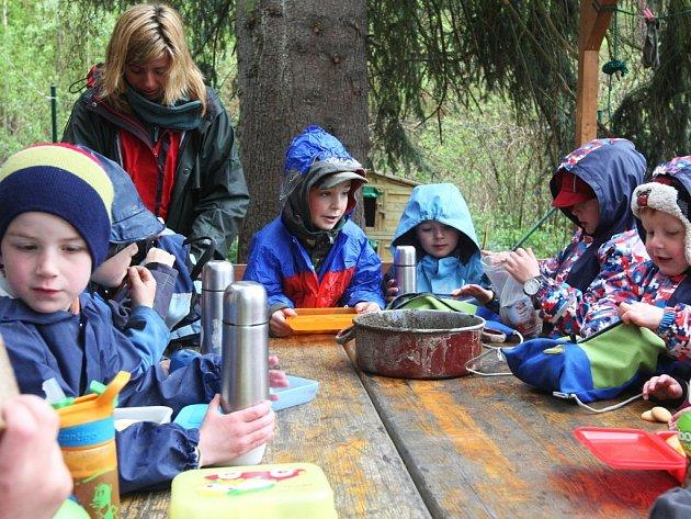 Lesní mateřská školka. Ilustrační foto.