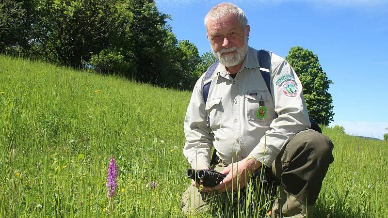 Jaromír Navrátil je dobrovolným strážcem CHKO Beskydy. Pulčínské skály mu učarovaly už v dětství. Je i okolí chrání už přes čtyřicet let. Jedním z mnoha skvostů zdejší přírody je vzácná orchidej - vstavač mužský.