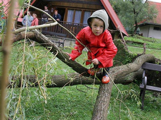 Prudká bouře vyvrátila i vzrostlou vrbu v hovězském kempu U Splavu.