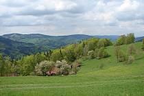 Horské louky podle ochránců potřebují pomoci. Chtějí ozdravit ekosystém v údolí Vsetínské Bečvy a zabránit mizení vzácných druhů rostlin a živočichů.