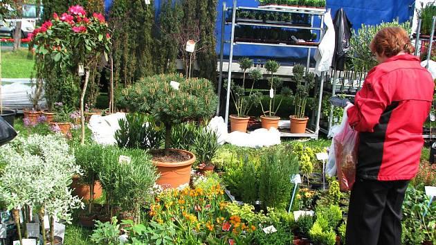 Prodejní výstava Valašská zahrada. Ilustrační foto