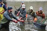 Rybáři ve Valašském Meziříčí v sobotu 5. května 2018 při záchranném přesunu ryb v Rožnovské Bečvě.