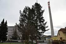 V Zubří na Rožnovsku připravují demolici 110 metrů vysokého komína, který byl desítky let dominantou města. Postupně jej rozebere speciální bagr; středa 3. února 2021
