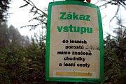 Poslední tabulky upozorňující na zákaz vstupu do mladých jehličnatých porostů v pondělí 3. prosince 2018 rozmístili pracovníci valašskomeziříčské společnosti Městské lesy a zeleň. Zákaz platí od 1. do 24. prosince a vztahuje se na jehličnany v městských l