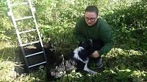 V betonové šachtě v Zubří uvízl pes plemene border kolie, zachránili ho hasiči