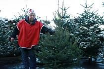Od té doby, co Marta Mrlinová prodává vánoční stromky, se jí nemoci vyhýbají.
