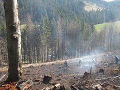 Hasiči zabránili rozšíření požáru do lesa.
