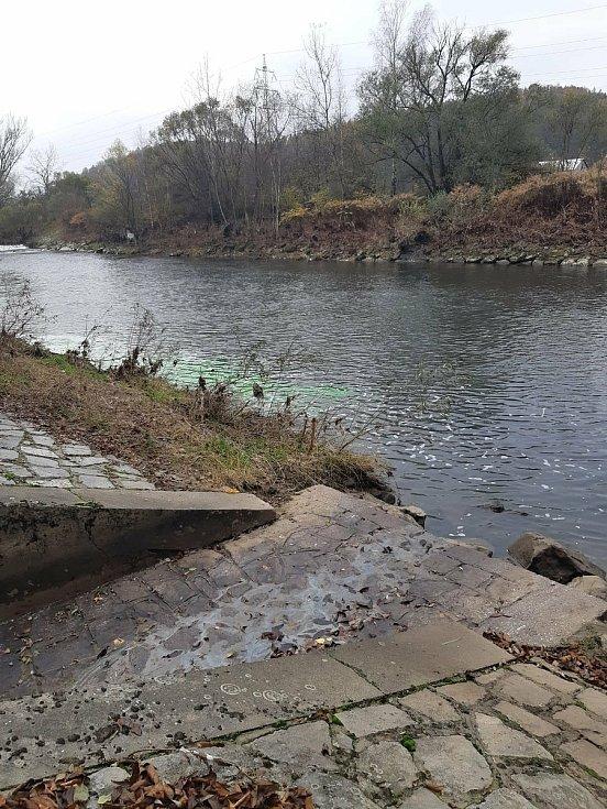 Kriminalisté kvůli otravě Bečvy kyanidy vypustili 17. listopadu 2020 do řeky fluorescein aby vodu zabarvili. Šlo o test, pomocí něhož zkoumají chování neznámé látky v toku.