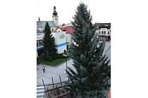 Rožnované už mohou na svém náměstí obdivovat letošní vánoční strom.