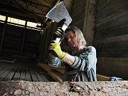Tesaři firmy Teslice CZ opracovávají v areálu v Bystřičce na Vsetínsku trámy, které budou použity při obnově vyhořelé památky Libušín na Pustevnách; pondělí 6. března 2017