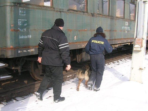 Statní policisté společně se strážníky městských policií uspořádali ve čtvrtek na Valašsku pátrací akci zaměřenou na hledané osoby.
