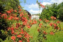Zámecký park v Lešné