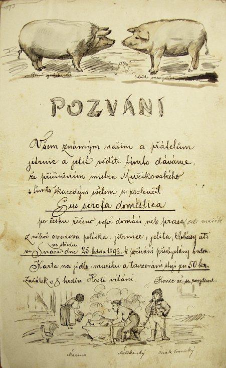 Pozvánka Snahy 1893