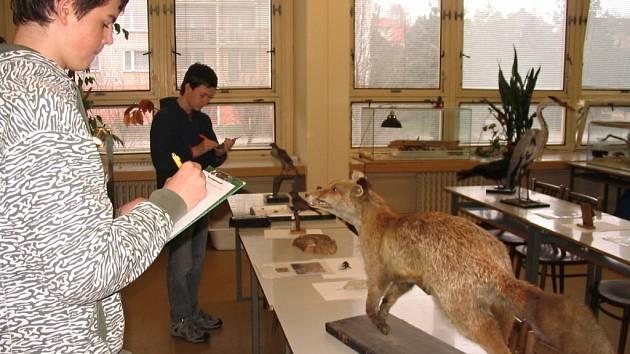 Nadějní biologové se ve čtvrtek pustili do rozeznávání zvířat, rostlin i práce s mikroskopem.