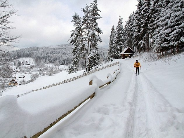 Běžecká trať ve Velkých Karlovicích.