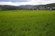 Tři desítky nových parcel vznikají nedaleko návsi v místní části zvané Dělnice.