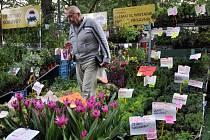 Podzimní zahradnické trhy Valašská zahrada 2015 ve Sport campu v Rožnově pod Radhoštěm