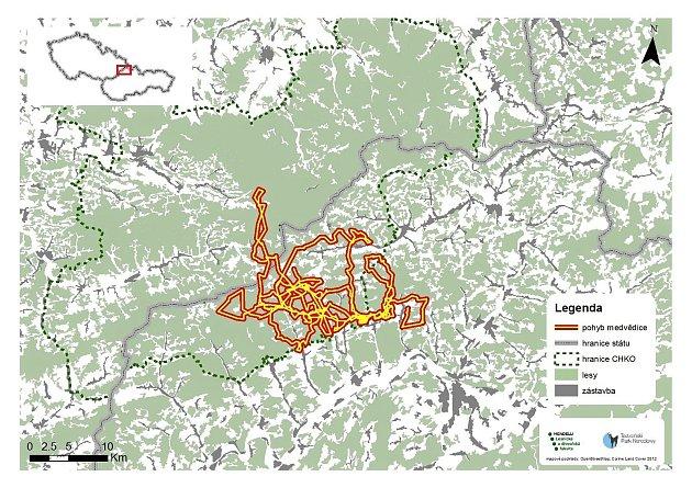 Mapa znázorňující pohyb telemetricky sledované medvědice od 9.července do 8.září 2019.