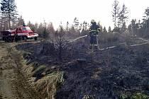 Jeden a půl hektaru mladého lesa u Liptálu na Vsetínsku zachvátil v sobotu 24. dubna 2021 v podvečer požár. Oheň likvidovalo devět jednotek hasičů.